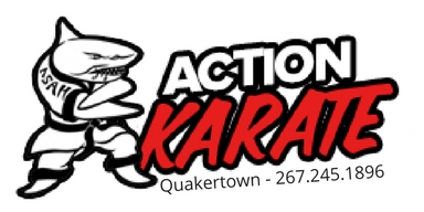 action karate quakertown