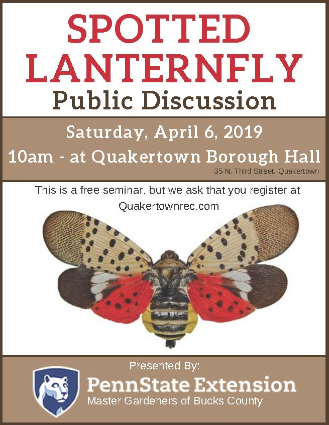 Spotted Lanternfly flyer