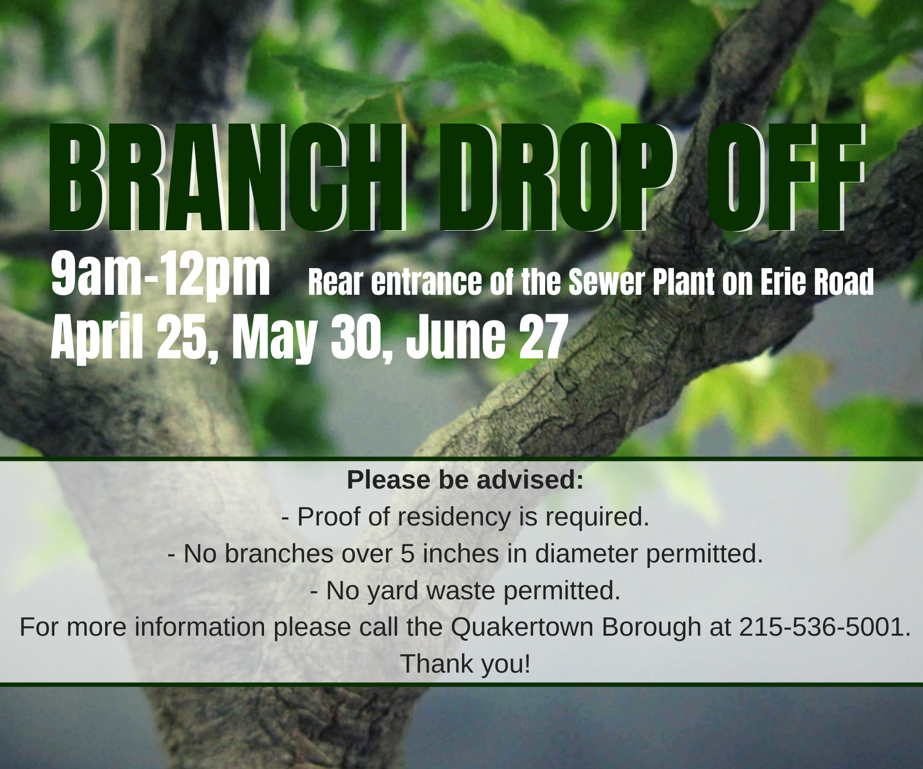 Branch Drop Off